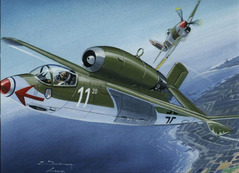 HE-162 SALAMANDER 11 X 16 INCHES