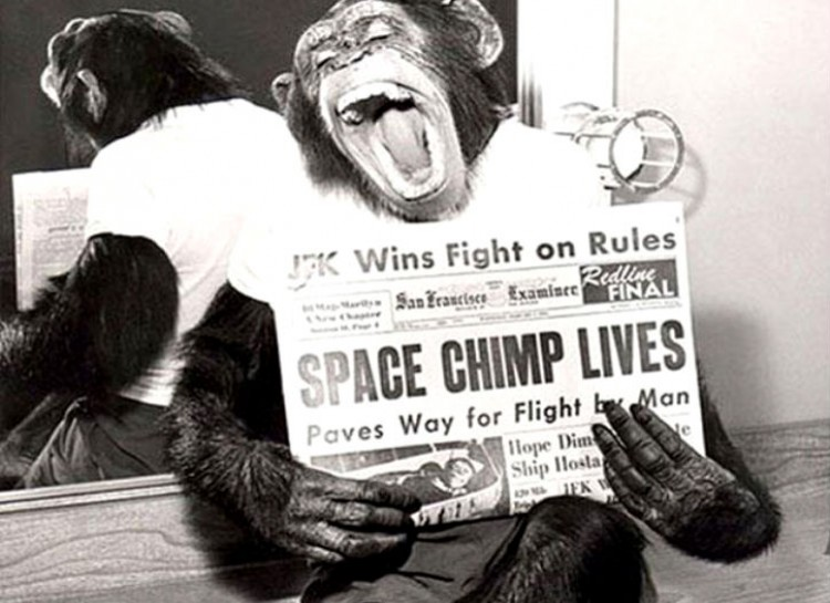 I KNEW ENOS THE SPACE CHIMP. ENOS THE SPACE CHIMP WAS A FRIEND OF MINE. I LOVED ENOS THE SPACE CHIMP. TED CRUZ IS NO ENOS THE SPACE CHIMP.